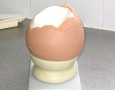 Egg on eggcup