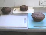 Chocolate madeira cakes