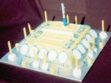 Tennis Court Cake - Alex's 13th