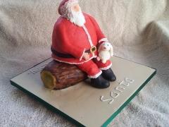 Xmas 2013 - Santa and Big Bunny